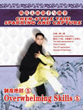 Chen-style Taiji Sparring and Capture - Overwhelming Skills 5 (1 DVD)