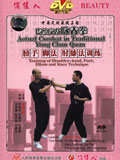 Wing Chun Arm, Foot, Elbow and Knee Techniques Training (1 DVD)