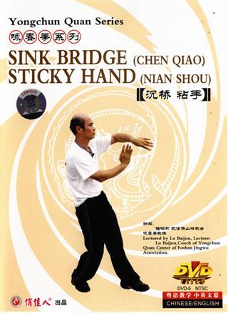 Wing Chun Sink Bridges & Sticky Hands (1 DVD)