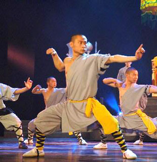 Shaolin Wuseng Single Arm Liangongfu w/ Pants (Polyester/Cotton)