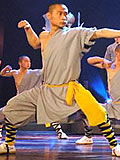 Shaolin Wuseng Single Arm Liangongfu w/ Pants (Cotton Plain)