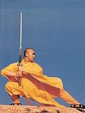 Shaolin Sengfu Haiqing Robe (Cotton Plain)