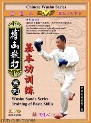 Basic Training of Sanda (2 DVD)