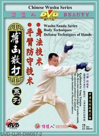 Body and Arm Defense Techniques of Sanda (1 DVD)