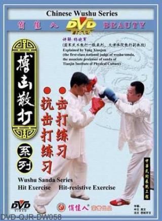 Hit and Hit-resistive Training of Sanda (1 DVD)