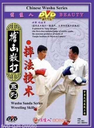 Wrestling Techniques of Sanda (1 DVD)