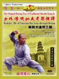 Shaolin South House Big Arm-through Fist III (1 DVD) 少林南院大通臂三路
