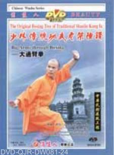 Shaolin Big Arm-through Fist (1 DVD) 少林大通臂拳
