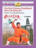 Shaolin Arm Through Fist (1 DVD) 少林通臂拳