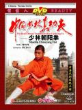 Shaolin Chaoyang Fist (1 DVD) 少林朝陽拳