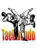 Taekwondo Series T-Shirt
