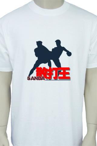 Sanda Series T-Shirt